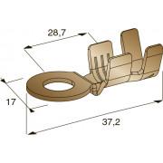 Клемма неизолированная кольцевая М6 CuZn, сечение провода 1-2,5, шт
